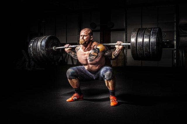 Le chiavi veloce lo sviluppo del tessuto muscolare