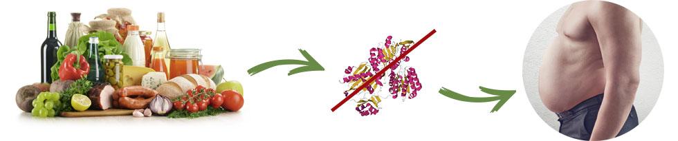 Effetti collaterali - fa male - contraindicazioni - Garcinia Slim