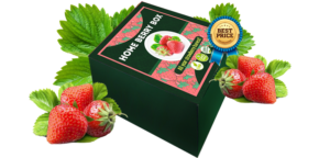 Home Berry Box - erboristeria - commenti - come si usa
