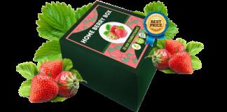 Home Berry Box - opinioni - prezzo