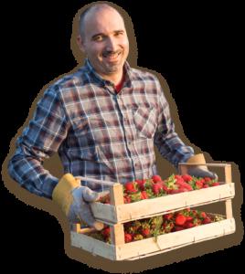 Home Berry Box - prezzo - Aliexpress - Amazon - dove si compra - farmacie
