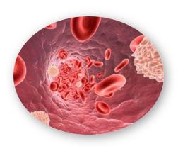 GliKal - Effetti collaterali - contraindicazioni - fa male