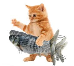 fa male - Effetti collaterali - Magic Fish