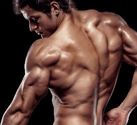 Italia - opinioni - recensioni - forum - funziona - chi l'ha provato - X-Muscle