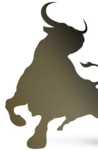 Long Tauro Power - Italia - forum - funziona - chi l'ha provato - opinioni - recensioni